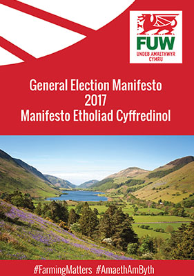 Image of manifesto 2017 cover