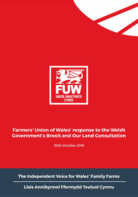 Brexit and Our Land Consultation Response
